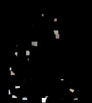 Copie d'écran du script Sharkphp